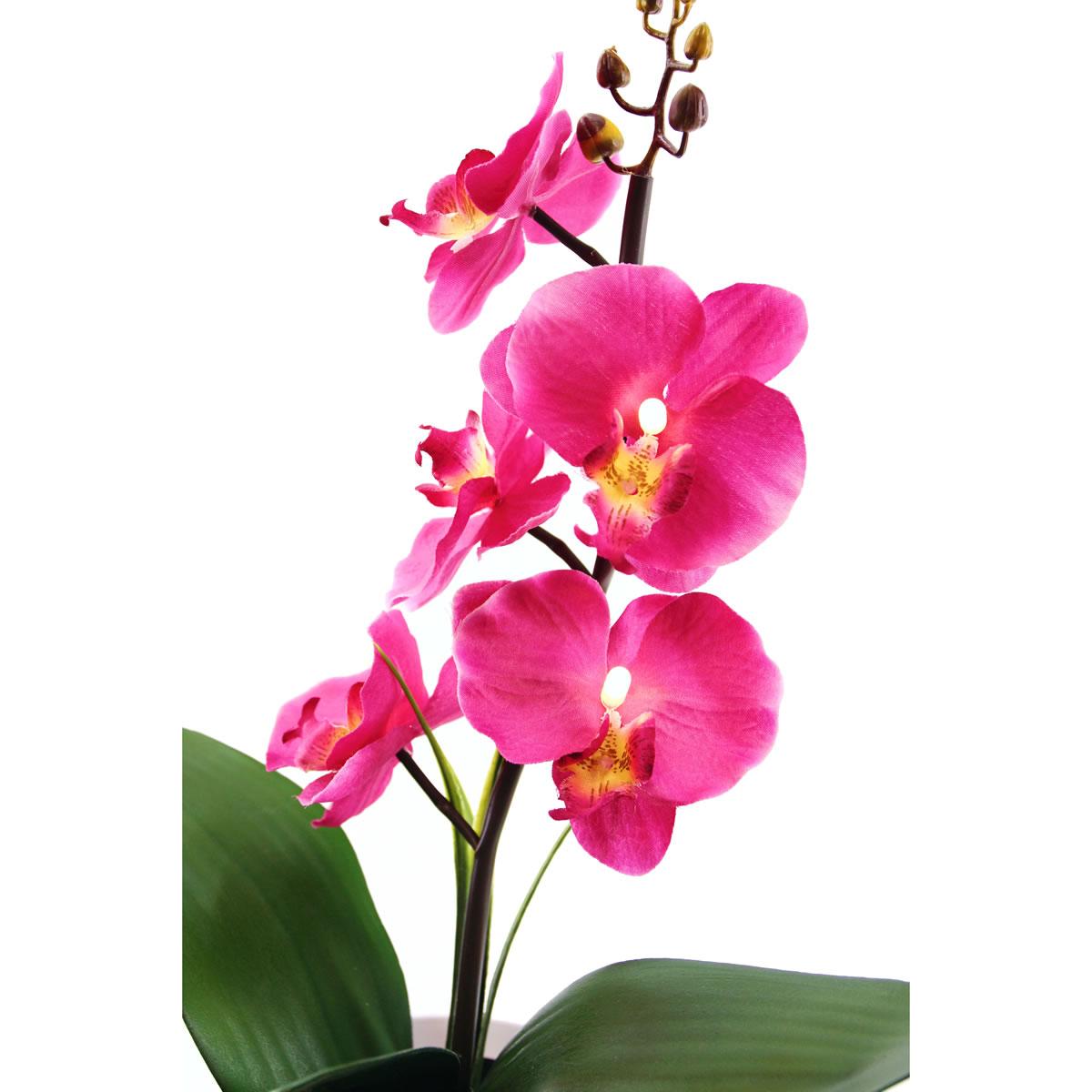 art decor LED Orchidee im Blumentopf, Pflanze, Beleuchtung, Blume ...