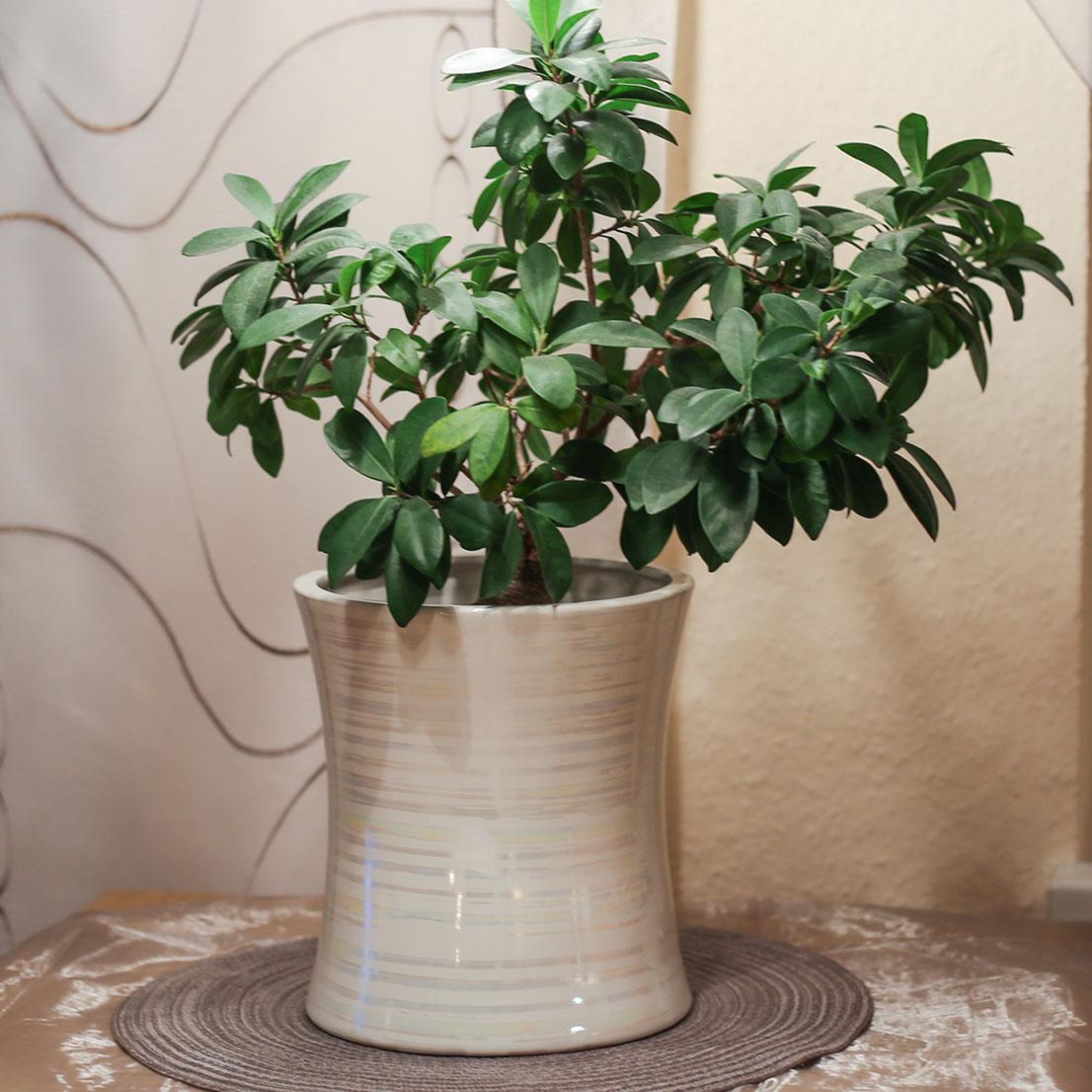 Art decor vase zylinder, blumenvase, Übertopf, blumentopf, keramik ...